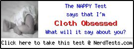 The Nappy Test -- Make and Take a Fun Test @ NerdTests.com's User Tests!