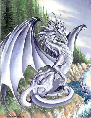 what type of dragon are you? -- Make and Take a Fun Test @ NerdTests.com's User Tests!