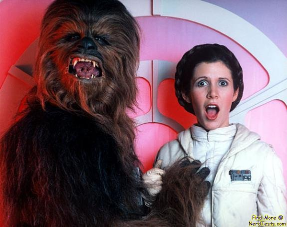 NerdTests.com - chewy and leia