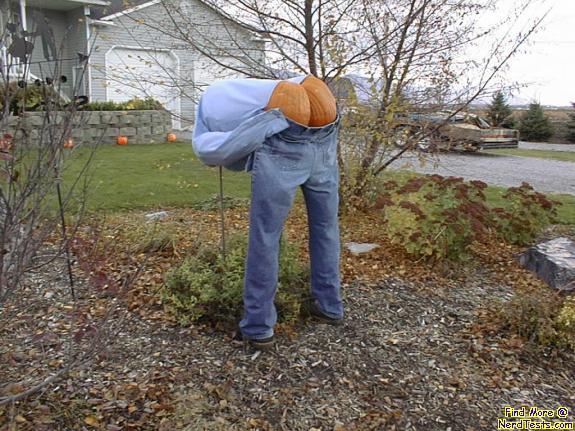 NerdTests.com - Halloween Butt