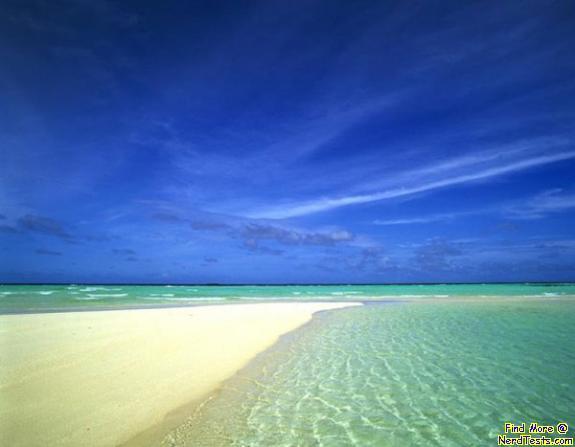 NerdTests.com - Sunny Beach