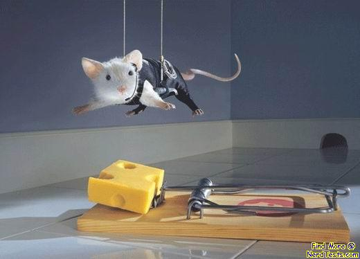 Mission in-mouse-ible