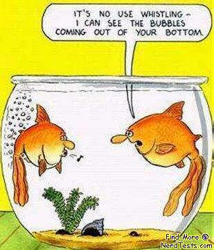 Fun pics for Farting fish game